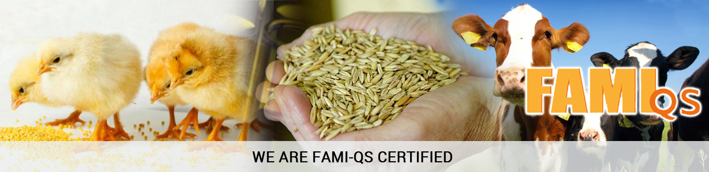 WE-ARE-FAMI-QS-CERTIFIED-banner